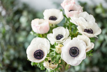 Pink And White Anemones In Glass Vase. Bunch Pastel Color. The Concept Of A Florist In A Flower Shop. Wallpaper.