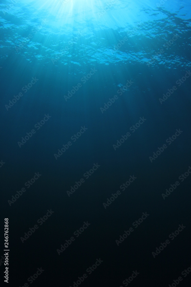 Fototapeta Underwater blue background in sea