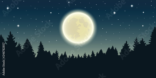 starry sky with full moon in forest landscape vector illustration EPS10 Canvas-taulu