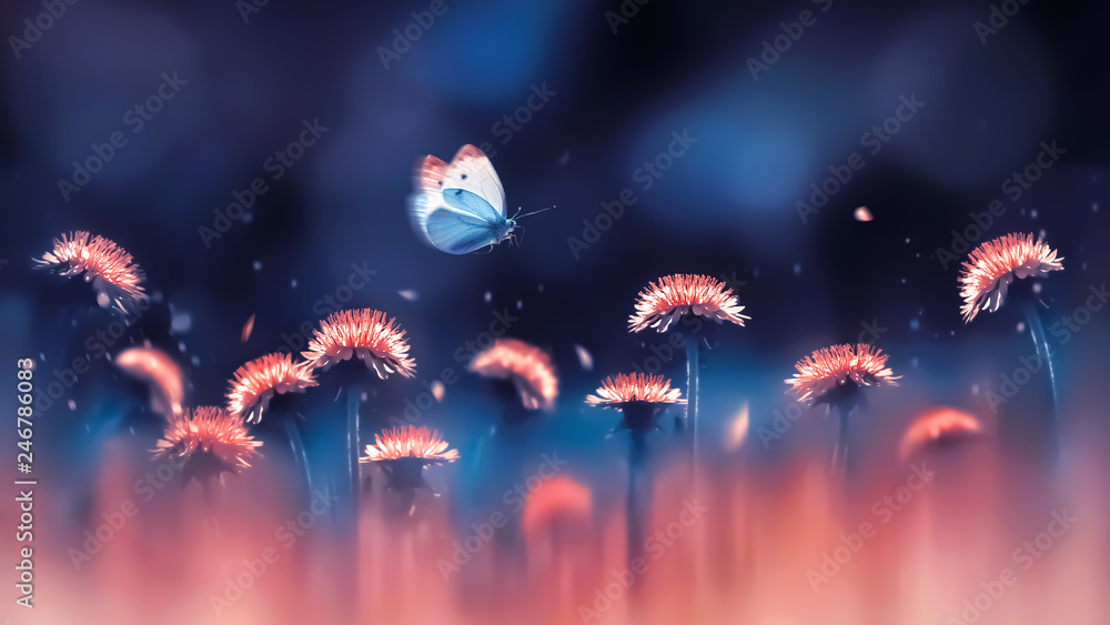 Fototapety, obrazy: Coral bright dandelions and blue butterfly.  Spring summer creative background. Artistic image in backlight.