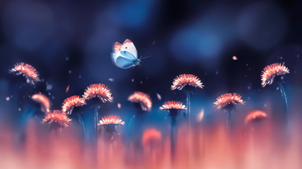 Obraz na Szkle Do sypialni Coral bright dandelions and blue butterfly. Spring summer creative background. Artistic image in backlight.