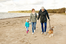 Family, Pets And People Concept - Happy Mother, Father And Little Daughter Walking With Beagle Dog On Leash On Beach In Autumn