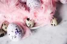 Easter Background With Easter Eggs And Pink Feathers. The View From The Top. Quail Egg