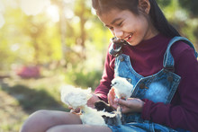 Young Girl With Small Chickens