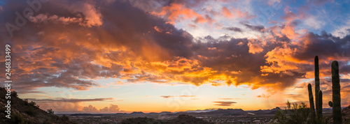 Canvas Prints Deep brown A panorama of a dramatic sunset over the desert with saguaro cactus and colorful clouds in the sky.