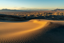 Wind Blown Ripples In A Sand Dune, Kelso Sand Dunes, Mojave National Preserve, California