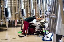 Man In A Winery Working In The Wine Process