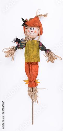 Fototapeta scarecrow isolated on white background