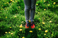 Young Girl Standing On Grass And Dandelion Flower