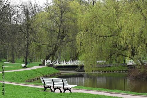 Fototapeta park zdrojowy w Nałęczowie obraz