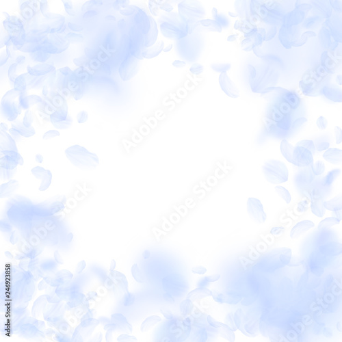 Poster Ciel Light blue flower petals falling down. Attractive