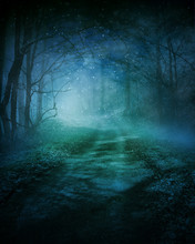 Deep Woods Background