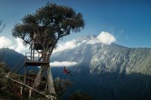 Tree House Swing In Baños, Ecuador