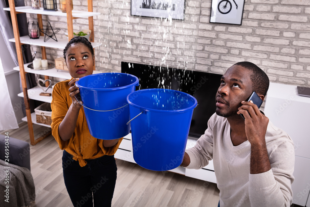 Fototapeta Couple Using Bucket For Collecting Water Leakage From Ceiling