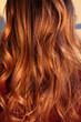 canvas print picture - balayage am kopf einer Frau, Haare im sonnenlicht rötlich, rote Haare