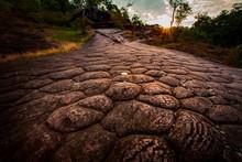 Suncrack Geology In Phu Hin Rongkla National Park Phitsanuloke Thailand