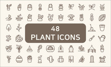 Set Of 48 Plant And Cactus Rel...