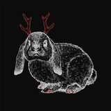 Hare with a horns isolated on a black background. Hand drawn fantasy ink illustration. Vintage style. Graphic artwork with the bunny. Magical creature. - 246962085