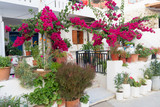 Fototapeta Kwiaty - building on the Mediterranean decorated with flowers