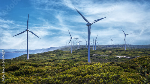 Albany Wind Farm   in Western Australia. Canvas-taulu