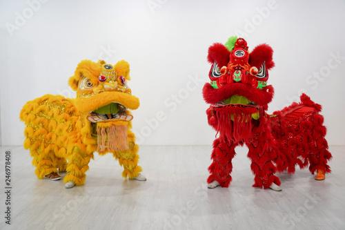 Fotografie, Tablou  Manipulated China Lion.
