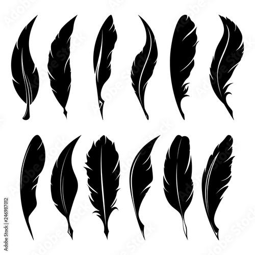 Photo Feathers pen black icon silhouette