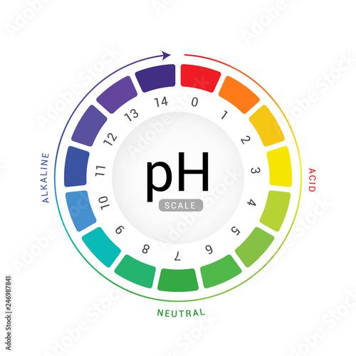 Photo pH scale indicator chart diagram acidic alkaline measure