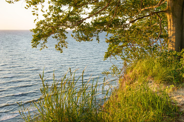 Fototapeta Morze Steilküste an der Ostsee