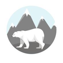 Polar Bear In The Mountains
