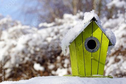 gelber nistkasten im winter Poster Mural XXL
