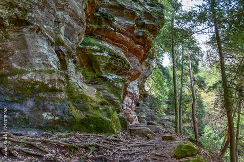 Valokuva  Wooded Cliffside, Ohio