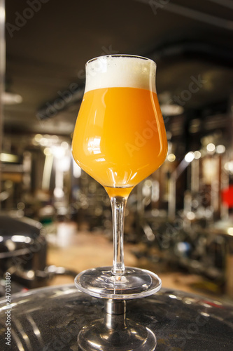 Hazy IPA beer at the brewery Canvas Print