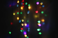 Colorful Bokeh In The Shape Of Animal Tracks