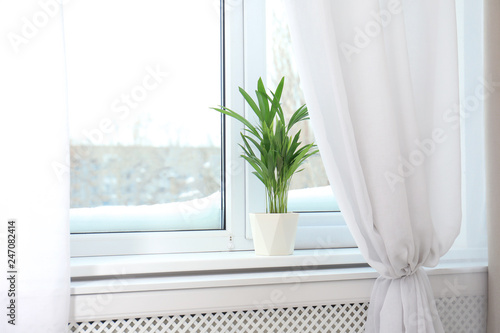 Window with open curtains and houseplant on sill