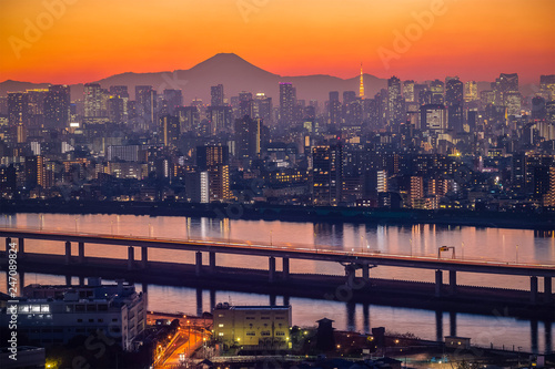 Photo Stands Lavender Tokyo city view with Mt. Fuji at twilight