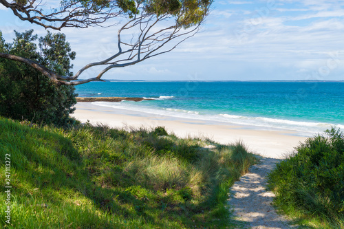 Obraz Beach water view in the city of Huskisson, NSW, Australia, a small coastal town well known as gateway to Jervis Bay area - fototapety do salonu