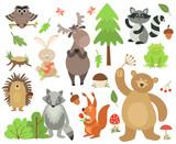 Cartoon forest animals. Elk owl hare raccoon squirrel bear hedgehog frog. Woodland animal vector isolated set