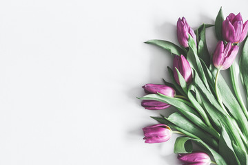 Flowers composition. Purple tulip flowers on pastel gray background. Valentines day, mothers day, womens day concept. Flat lay, top view, copy space