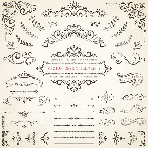 Photo  Ornate vintage design elements with calligraphy swirls, swashes, ornate motifs and scrolls