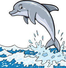 The Dolphin Who Is Jumping Out Of Sea Water