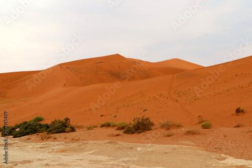 Fotobehang Zandwoestijn Big Daddy sand dune Sossusvlei - Namibia Africa