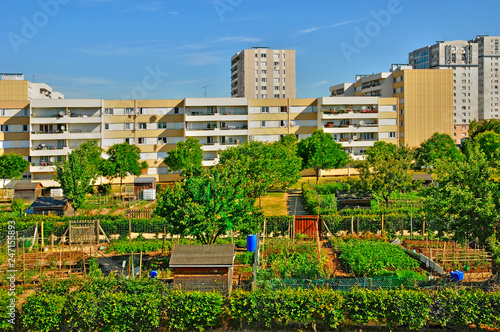 Les Mureaux; France - may 13 2011: allotment garden Canvas Print
