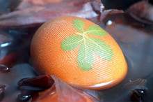 Easter Egg Dyed With Onion Skins, Leaf Pattern As Decoration