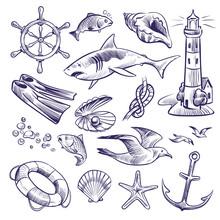 Hand Drawn Marine Set. Sea Ocean Voyage Lighthouse Shark Knot Shell Lifebuoy Seagull Anchor Steering Wheel