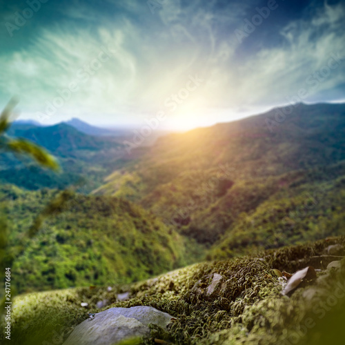 Green moss background of free space for your product and summer landscape of mountains in Madagascar. Summer sunset time and blue sky.  © magdal3na