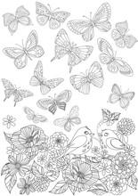 Flying Butterflies Above Bloss...
