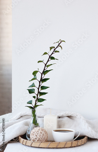 interior decor in a minimalist style, ideas. glass vase and green plant in a bright room Wall mural