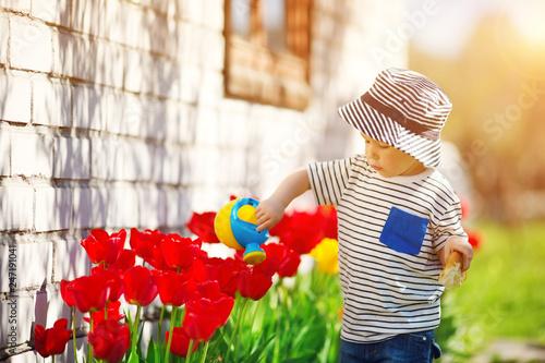Pinturas sobre lienzo  Little child walking near tulips on the flower bed in beautiful spring day