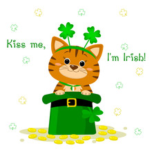 St.Patrick 's Day. A Red Tabby...