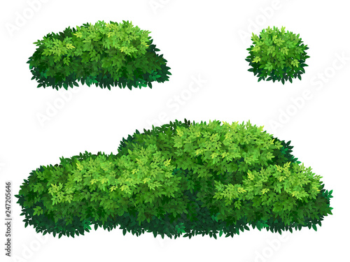 Obraz na plátně Set of green bush and tree crown of different shapes